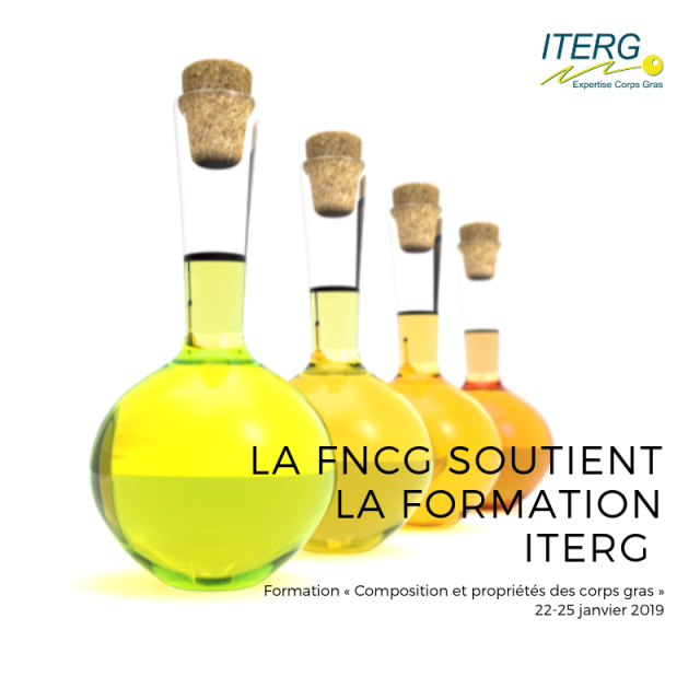 infographie formation iterg